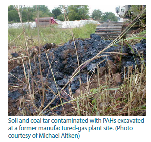 Photo of soil and coal tar contaminated with PAHs.
