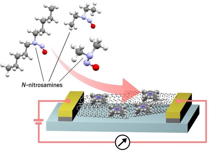 Nanosensor device.