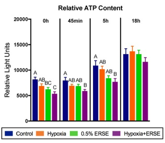 Across the first 3 time points, there was a decrease in relative ATP content in hypoxia, ERSE, and H+E treatment groups compared to controls.