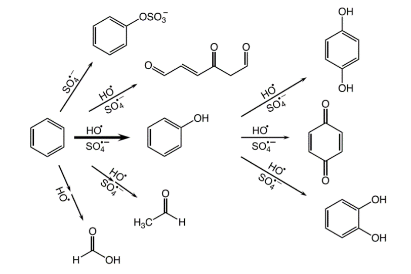 Representation of the reactions and byproducts from the oxidation of benzene.