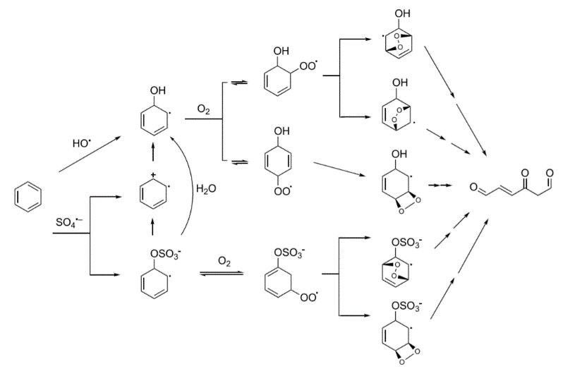 Representation of the formation of 4-oxo-2-hexenedial.