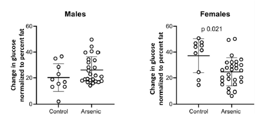 Graphs showing change in blood glucose levels for male and female offspring of arsenic-exposed mice.