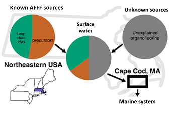 Fluorine from unknown sources constitute most of the PFAS contamination to marine ecosystems.